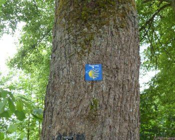 Markierung Pilgerweg in Crottorf
