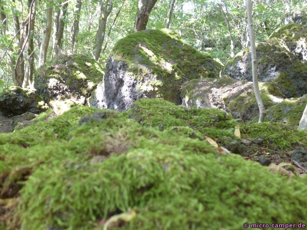 Auch hier Felsen am Wegesrand