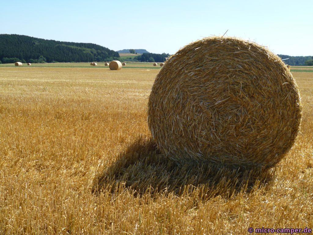 Strohballen auf dem Feld - immer ein schöner Anblick