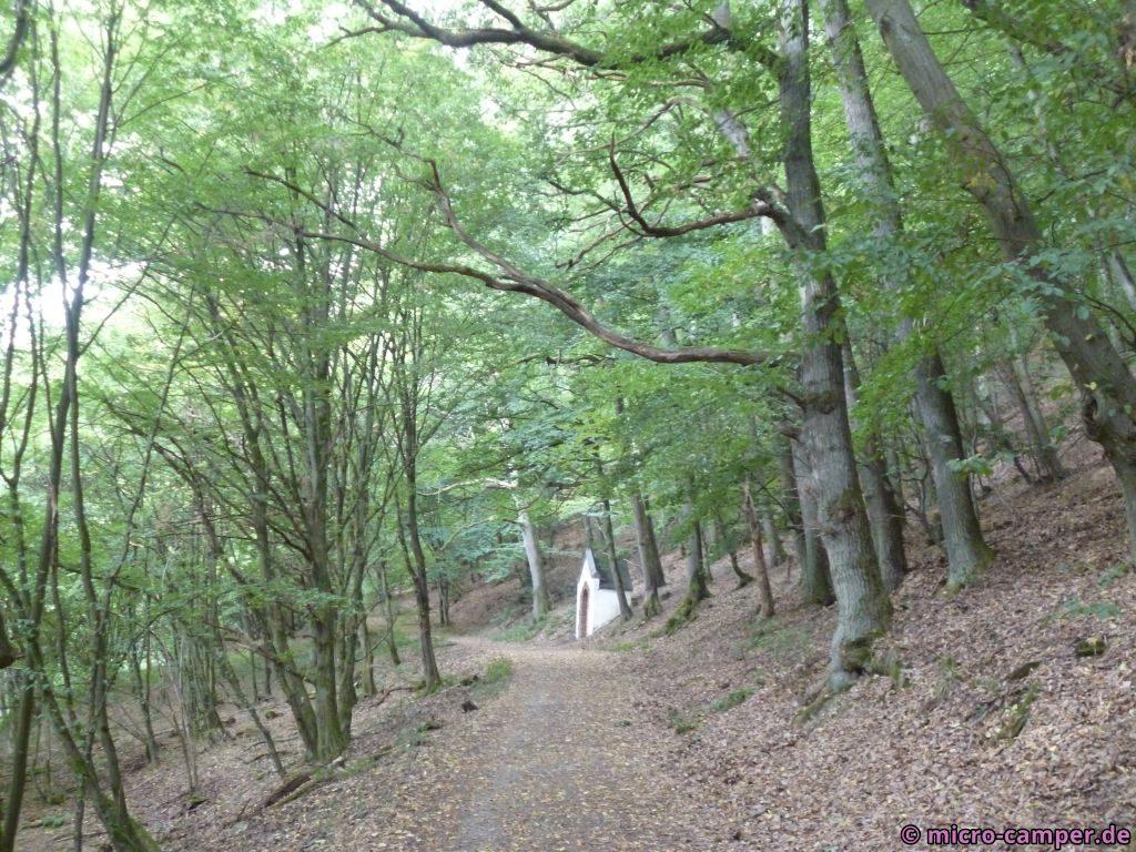Kreuzweg durch den Wald hinauf zur Abtei