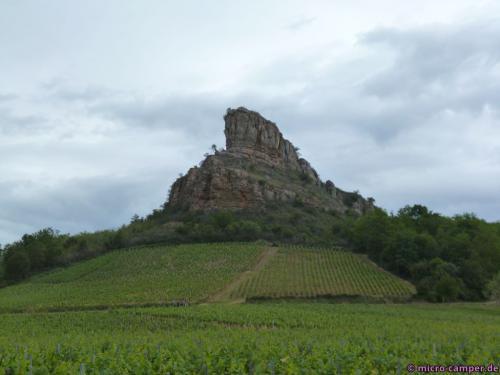 Der Felsen von Solutré, umgeben von Weinbergen