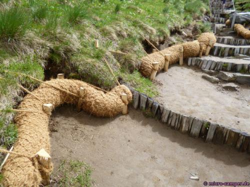 Erosionsschutz? Jedenfalls sehr nachhaltig.