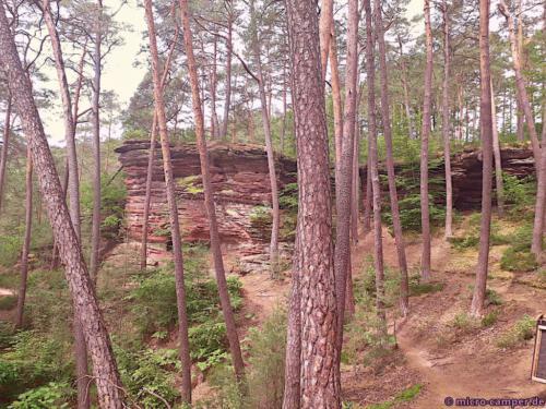 Die Felsenarena, ein Halbreis aus Sandstein