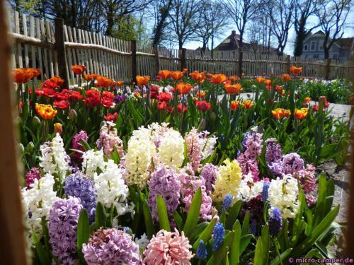 Frühling liegt nicht nur in der Luft