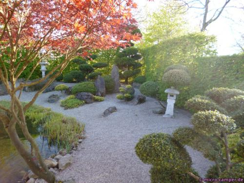 Dieser Koi-Zen-Garten strahlte für mein Empfinden ganz viel Ruhe aus