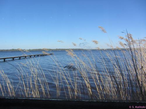 Blick vom Strandcafé auf den See