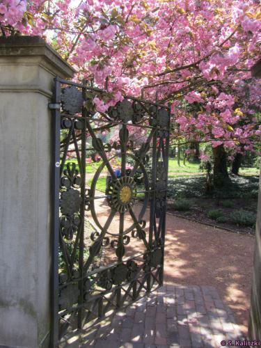 Der überaus schön geschmückte Eingang zum Schlosspark